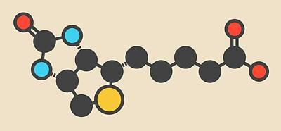 Vitamin B7 Molecule Art Print by Molekuul