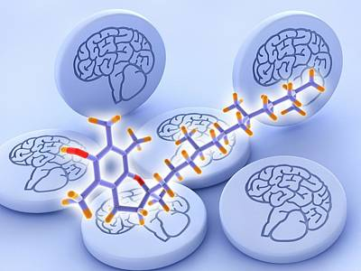 Mental Photograph - Vitamin E Molecule And Brain Drug Pills by Alfred Pasieka