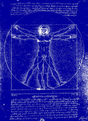 Wall Art - Drawing - Vitruvian Blueprint by