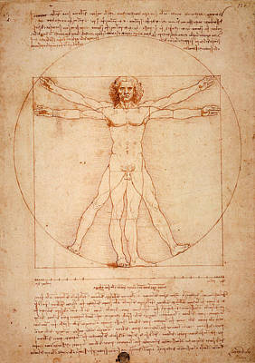 Vitruvian Man Art Print by Bill Cannon