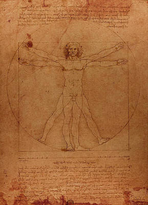 Vitruvian Man By Leonardo Da Vinci Sketch On Worn Parchment Art Print by Design Turnpike