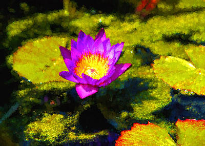 Photograph - Vivacious Waterlily Impression by Georgia Mizuleva