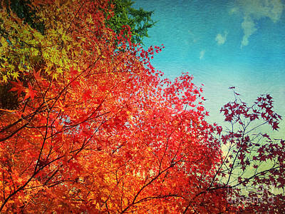 Photograph - Vivid Autumn Maple Leaves Painterly Textures by Beverly Claire Kaiya