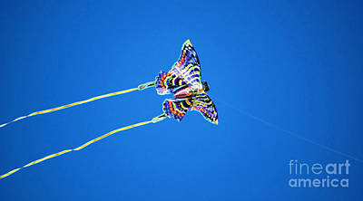 Digital Art - Vivid Colorful Butterfly Kite Flying In Brilliant Blue Sky Accented Edges Digital Art by Shawn O'Brien