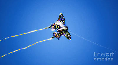 Digital Art - Vivid Colorful Butterfly Kite Flying In Brilliant Blue Sky Diffuse Glow Digital Art by Shawn O'Brien