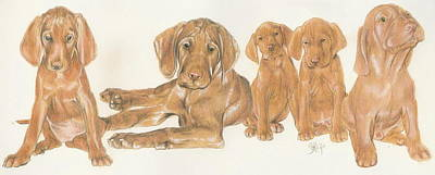 Sporting Mixed Media - Vizsla Puppies by Barbara Keith