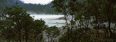Bare Trees Photograph - Volcanic Lake In A Forest, Kawah Putih by Panoramic Images