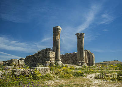 Ethereal - Roman pillars at Volubilis by Patricia Hofmeester