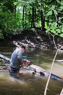 Volunteer Clearing Log Jam Art Print by Jim West