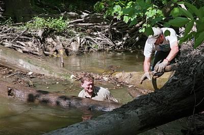 Volunteers Clearing Log Jam Print by Jim West