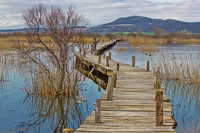 Photograph - Vrana Lake Nature Park Wooden Boardwalk by Brch Photography