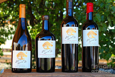 Winetasting Photograph - Vu Ja De All Over Again by Howard Tenke
