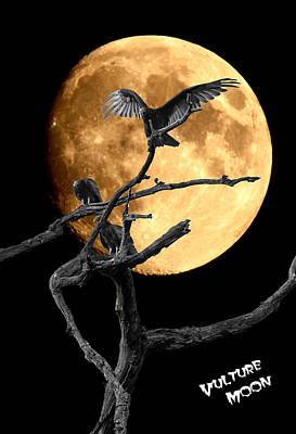 Digital Art - Vulture Art by David Lester
