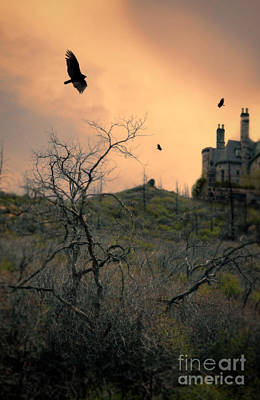 Photograph - Vultures Circling By Castle by Jill Battaglia