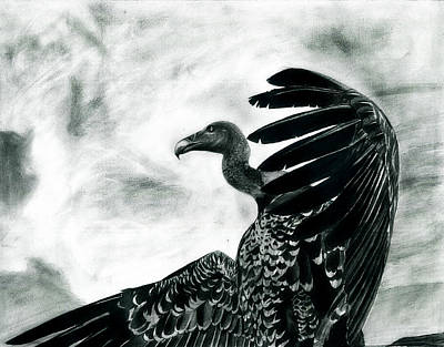 Vulture Mixed Media - Vulture's Pride by Raghav Ram