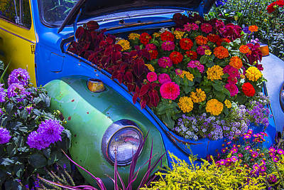 Open Photograph - Vw Bug Garden by Garry Gay