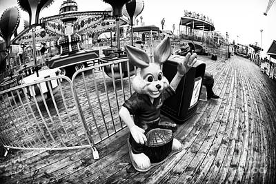Photograph - Wabbit Wave by John Rizzuto