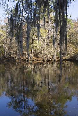 Photograph - Waccamaw River Reflections by MM Anderson