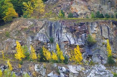 Photograph - Wachau Valley Autumn Scene by Alan Toepfer