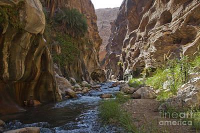 Jordanian Photograph - Wadi Hassa by Eyal Bartov