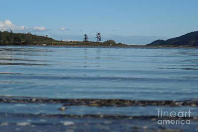Photograph - Wading To Portage Isle by A Cyaltsa Finkbonner