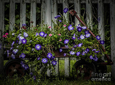 Photograph - Wagon Of Flowers by Ronald Grogan
