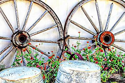 Photograph - Wagon Wheel Flowers by Audreen Gieger
