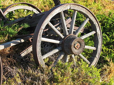 Bi-cycle Photograph - Wagon Wheels by Steven Parker