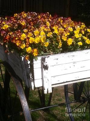 Wagonful Of Happy Pansies Art Print