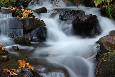 Wahkeena Creek 3 Art Print