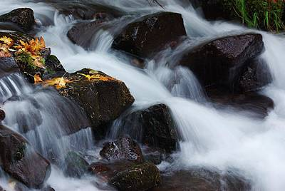 Wahkeena Creek Detail 1 Art Print