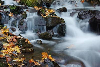 Photograph - Wahkeena Creek Detail 2 by Ken Dietz