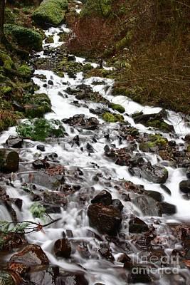 Photograph - Wahkeena Falls by Cari Gesch