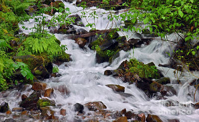Photograph - Wahkeena Falls Runoff II by Chuck Flewelling