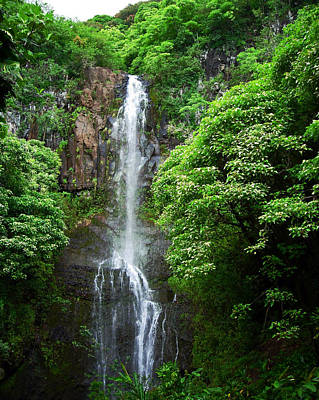 Waikani Falls At Wailua Maui Hawaii Art Print by Connie Fox