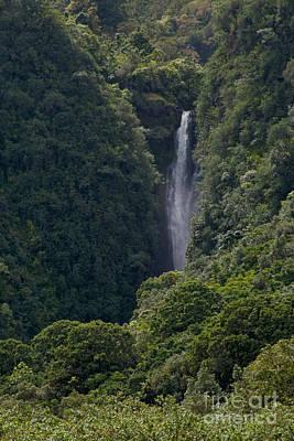 Digital Art - Wailua Stream Waiokane Falls View From Wailua Maui Hawaii by Sharon Mau