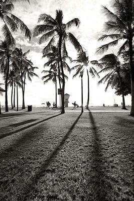 Waikiki Photograph - Waikiki Palm Shadows by Sean Davey