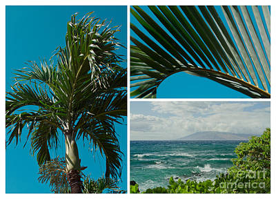 Photograph - Wailea Point Maui Hawaii by Sharon Mau