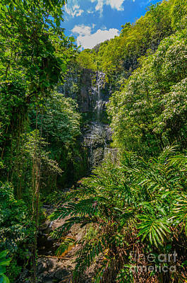 Photograph - Wailua Falls In A Lush Tropical Valley Maui Hawaii Usa by Don Landwehrle