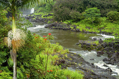 Wailuka River Print by Bob Phillips
