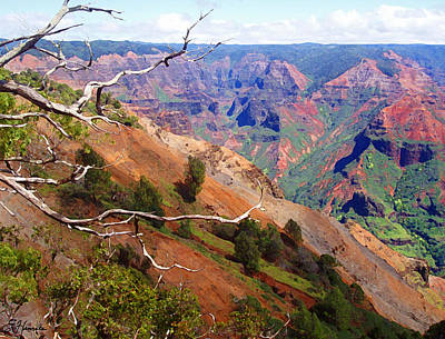 Painting - Waimea Canyon 1 by Ellen Henneke