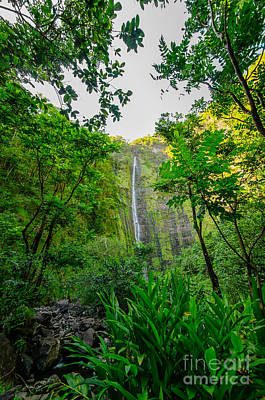 Photograph - Waimoku Falls On The Road To Hana Maui Hawaii Usa by Don Landwehrle