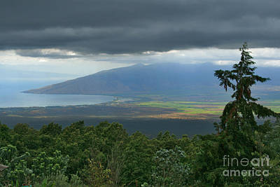 Digital Art - Waipoli Kula View Of West Maui From Haleakala by Sharon Mau