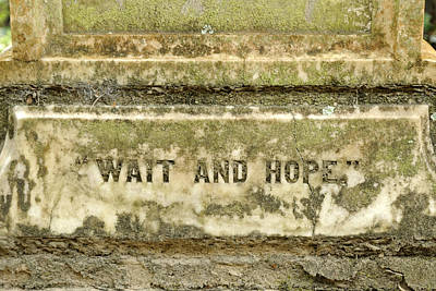 Photograph - Wait And Hope Forever by Bradford Martin