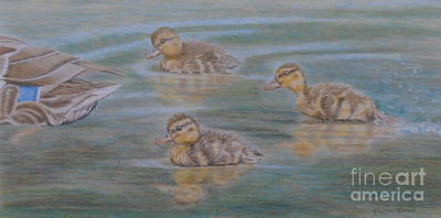 Baby Mallards Drawing - Wait For Me by Elaine Jones