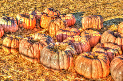 Hay October Photograph - Waiting At The Pumpkin Patch by Heidi Smith