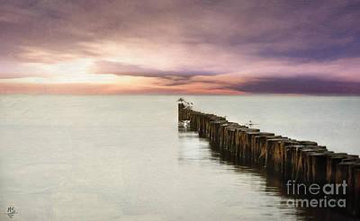 Jdm Photograph - Waiting Birds by Martin Slotta
