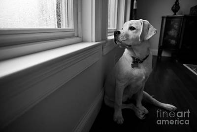 Grainy Photograph - Waiting by Diane Diederich