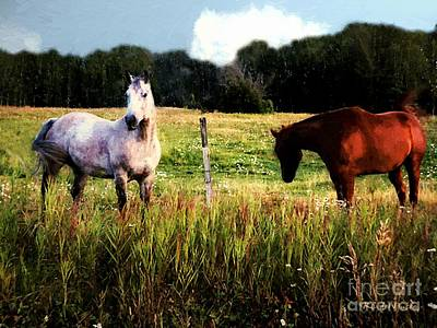 Blood Bay Horse Painting - Waiting For Apples by RC deWinter