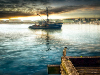 Photograph - Waiting For Fish by Bob Orsillo